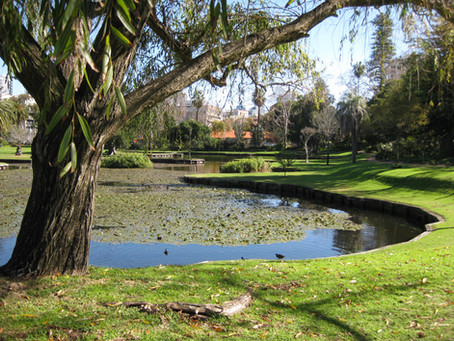 Queens Gardens East Perth