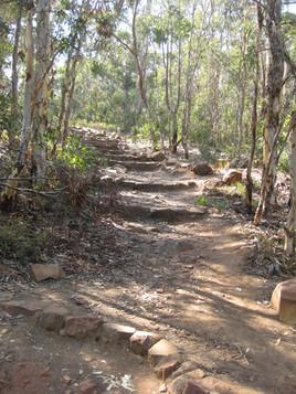 Sixty Foot Falls Trail