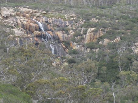 Sixty Foot Falls Trail, Ellis Brook Valley Reserve