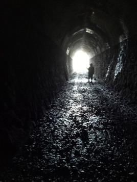 Railway Tunnels John Forrest NP