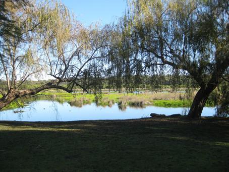 Wetlands Trail Yanchep National Park