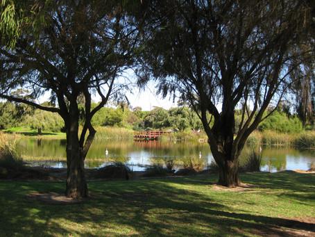 Booyeembara Park - White Gum Valley