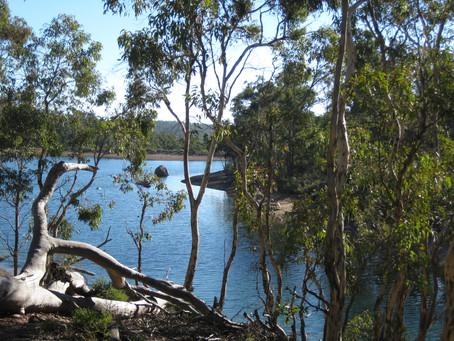 Glen Brook Dam Trail -  John Forrest National Park