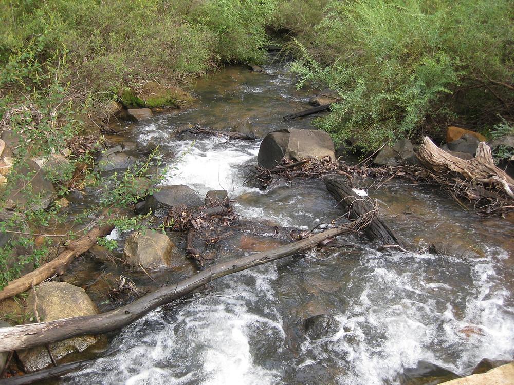 Piesse Brook