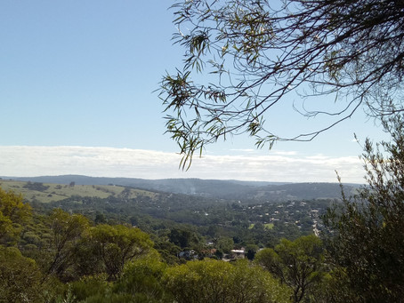 A day in the country - Toodyay