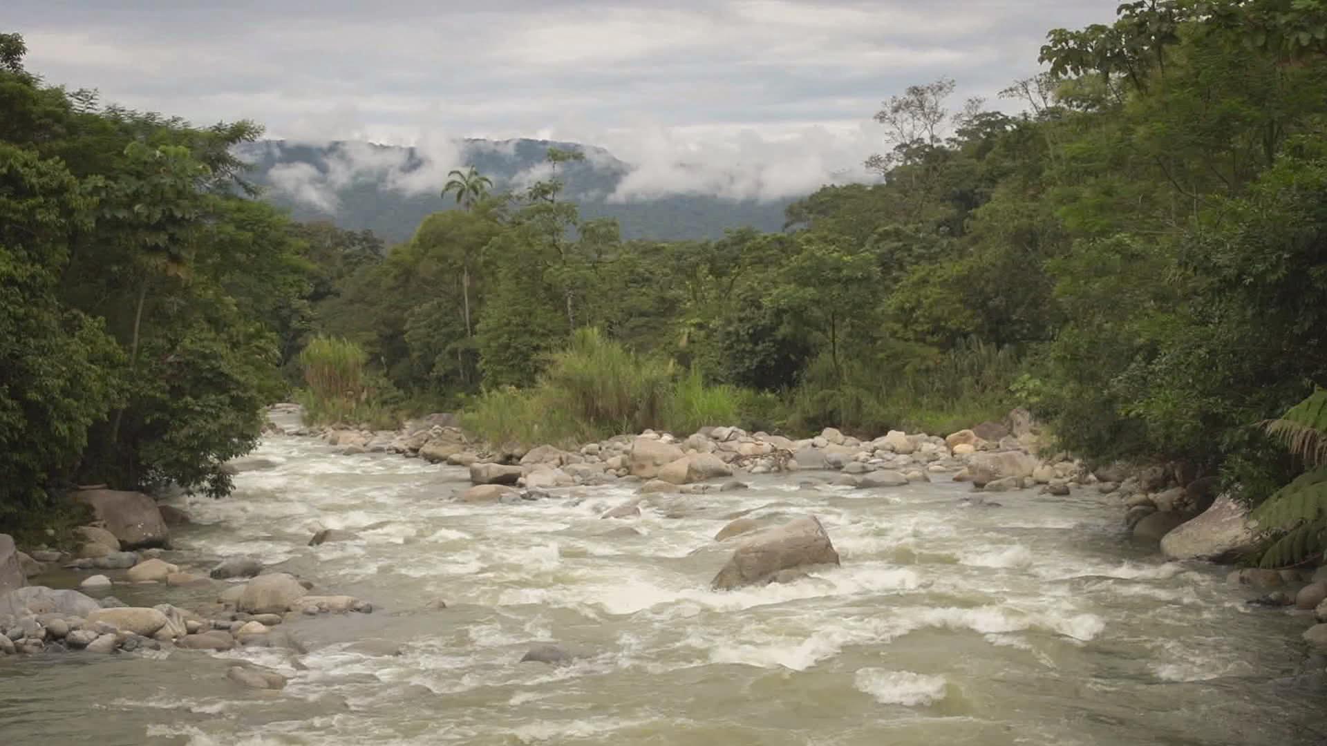 Putumayo River