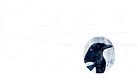 Magpie Tarot