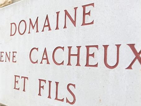 Domaine Rene Cacheux & Fils 新代理