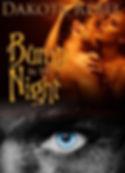Bump in the Night-bn.jpg