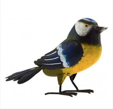 Barry - The Blue Tit