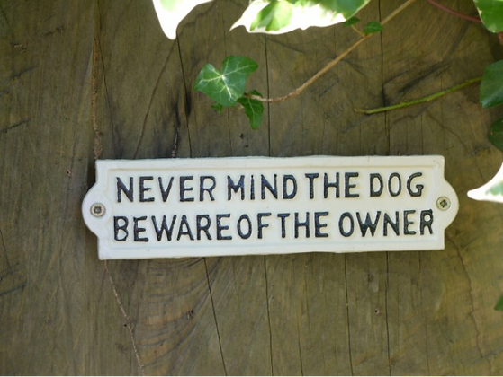 Never Mind the Dog Plaque
