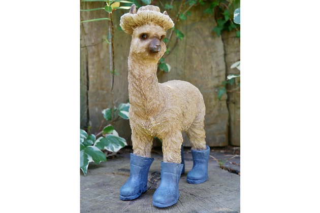 Leanne - The Llama in Boots