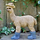 Thumbnail: Leanne - The Llama in Boots