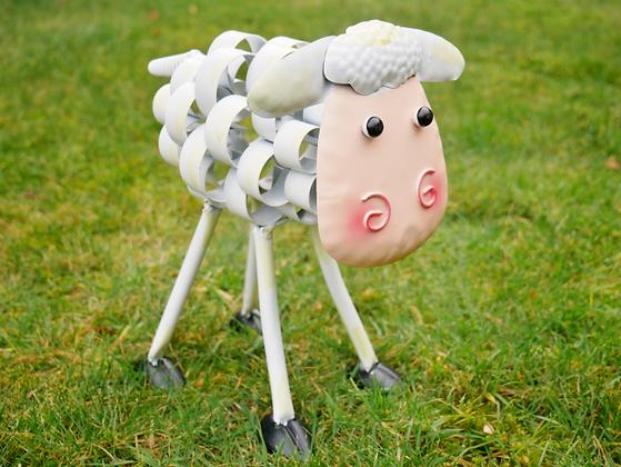 Shelia - The Curly Sheep