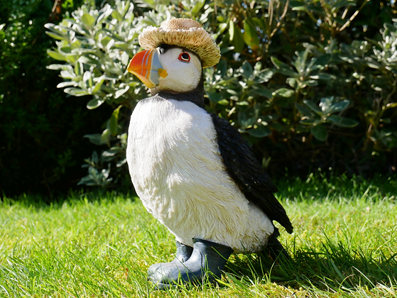 Paul - The Puffin in Boots