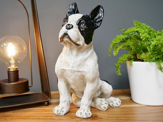 Frenchie - The French Bulldog