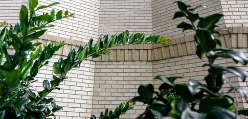 Bricks and Morton 010.jpg