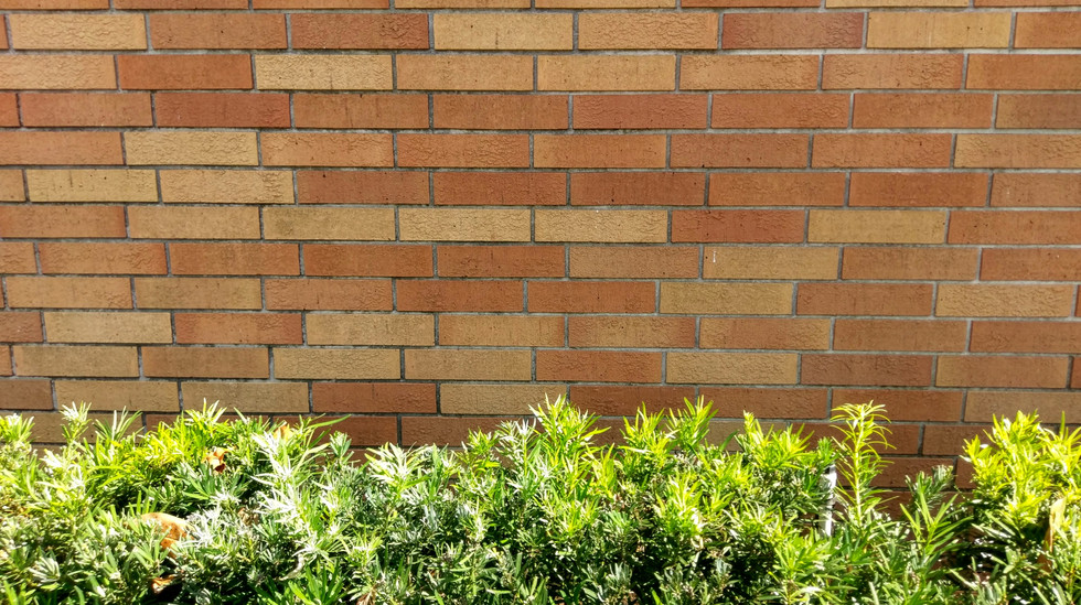 Bricks and Morton 038.jpg