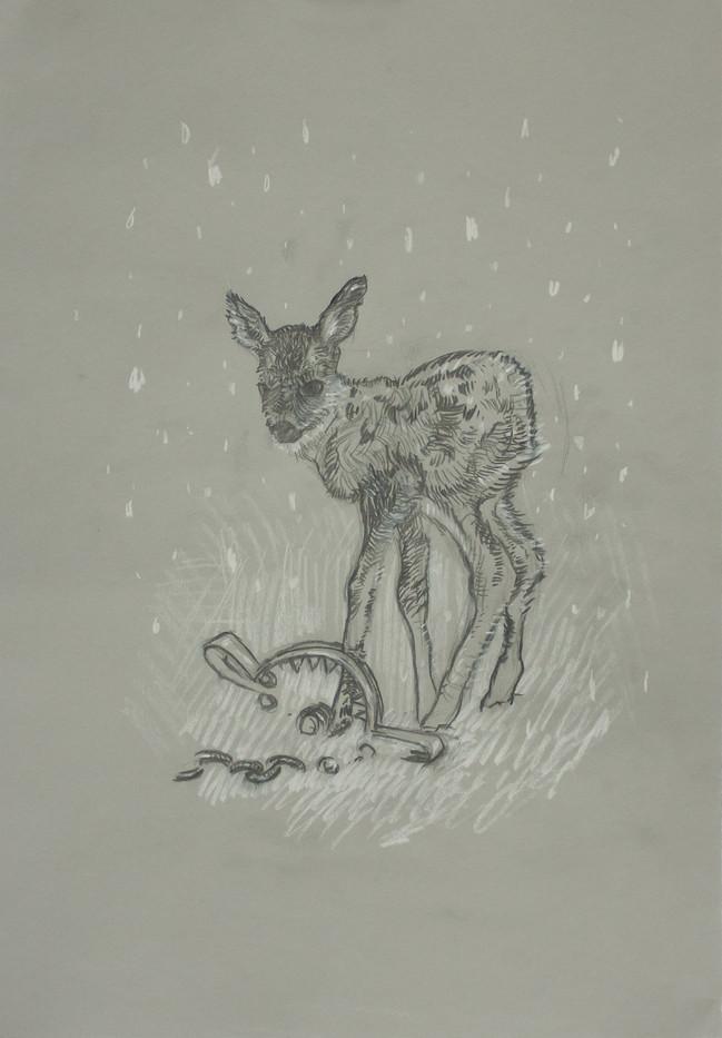 Mat Collishaw | The Invisible Calf | 2014 | Conte Pastel and Pencil on Paper | 42 x 30 cm