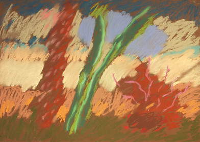Kevin Atkinson | Untitled (Under Water Flowers) | c. 1985 | Pastel on Paper | 50 x 70 cm
