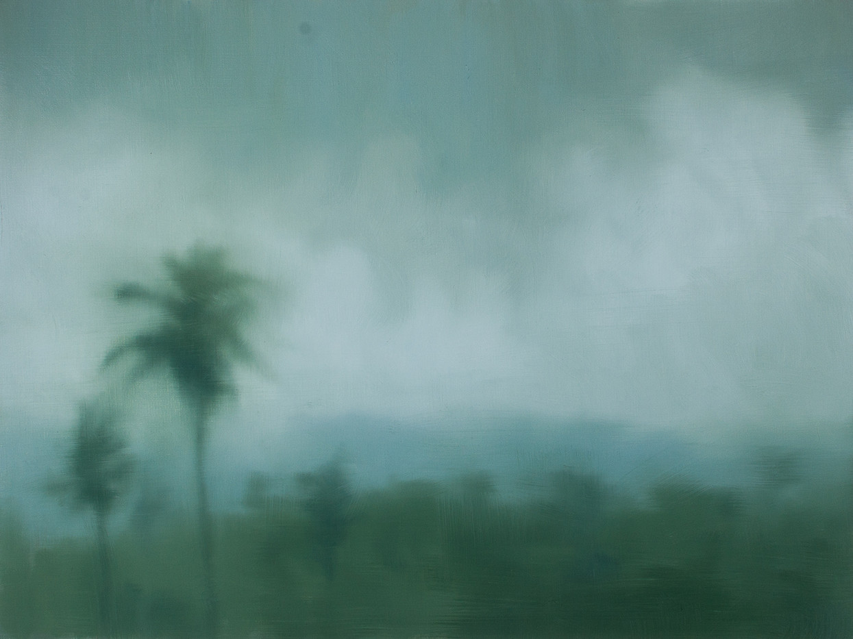 Jake Aikman   S10.270, E120.403   2013   Oil on Canvas   30 x 40 cm
