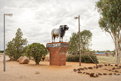 Margaret Courtney-Clarke | A Brahman Bull statue stands sentinel at the town of Gobabis, its gonads protected by razor wire after 'molestation' by school children. Kalahari, Namibia | Giclée Print on Photo Rag Baryta Paper | 50 x 75 cm | Edition of 6 + 2 AP