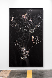 Giovanni Ozzola | Omnia Munda Mundis | 2008 - 2016 | Gicleé Print on Epson Hot Press Natural Paper | 266 x 150 cm