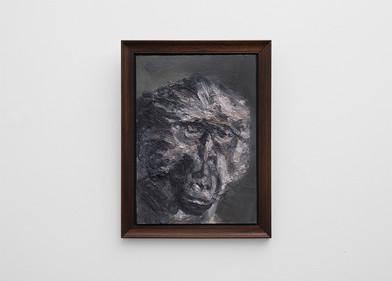 Johann Louw | Frontale Bobbejaan Portret | 2017 | Oil on Panel | 42 x 30 cm