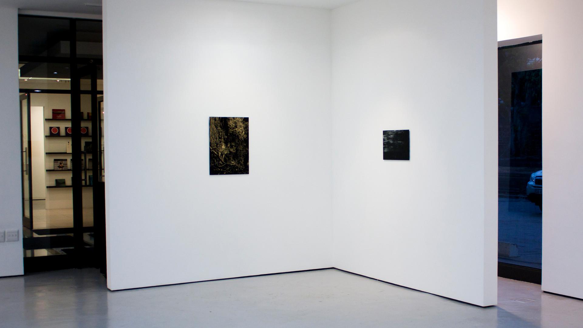 Peter Eastman | Deep Chine | 2014 | Installation View