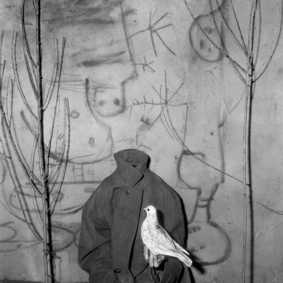 Roger Ballen   Headless   2006   Archival Pigment Print   90 x 90 cm   Edition of 12