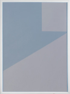 Helen A. Pritchard   Untitled - Carrier 17   2013   Oil and Pigment on Canvas   82.5 x 60 cm