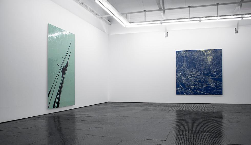 Peter Eastman | Surface Light | 2015 | Installation view