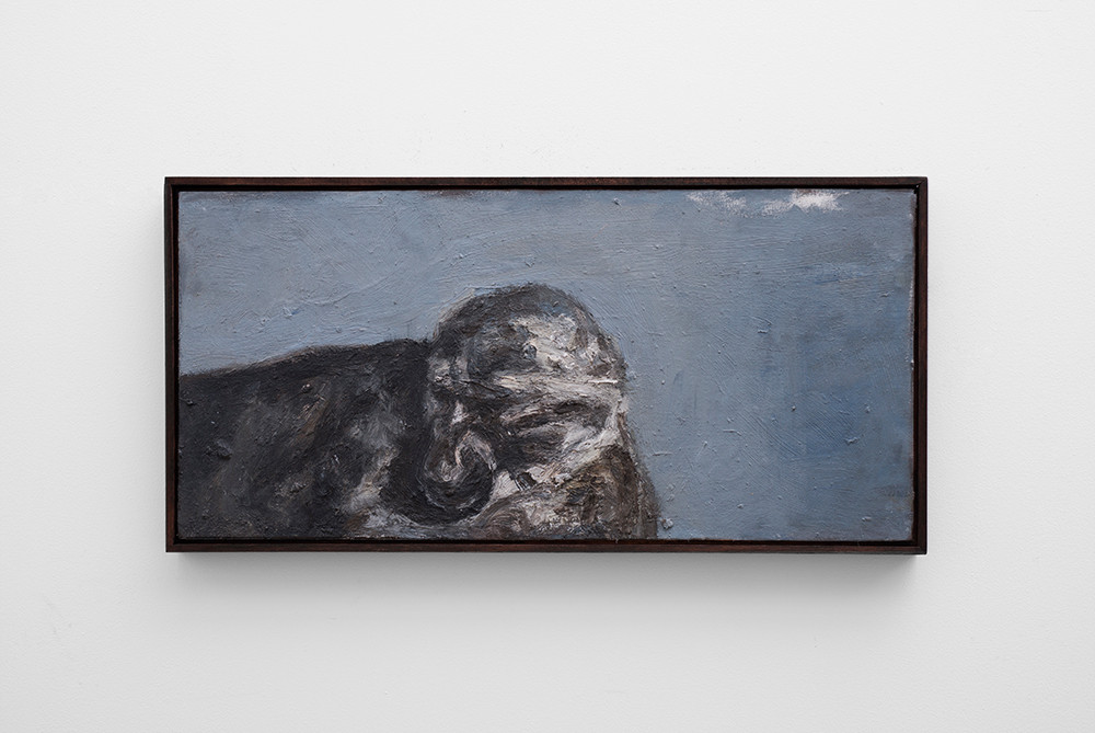 Johann Louw | Klein Grys | 2017 | Oil on Panel | 39 x 82 cm