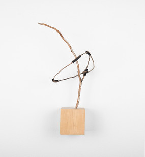 Ruann Coleman | Study IV (Weld) |2017 | Iron Wood and Found Twig | 38 x 20 cm