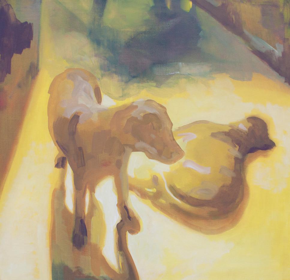 Kate Gottgens   Dogs   2013   Oil on Canvas   80 x 78 cm