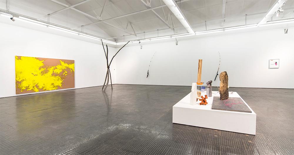Ruann Coleman   Certain Lengths   2017   Installation View