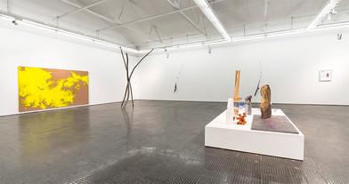Ruann Coleman | Certain Lengths | 2017 | Installation View