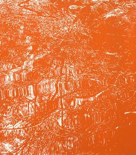 Peter Eastman   Deep Chine - Coldstream I   2016   Oil on Aluminium   40 x 34 cm