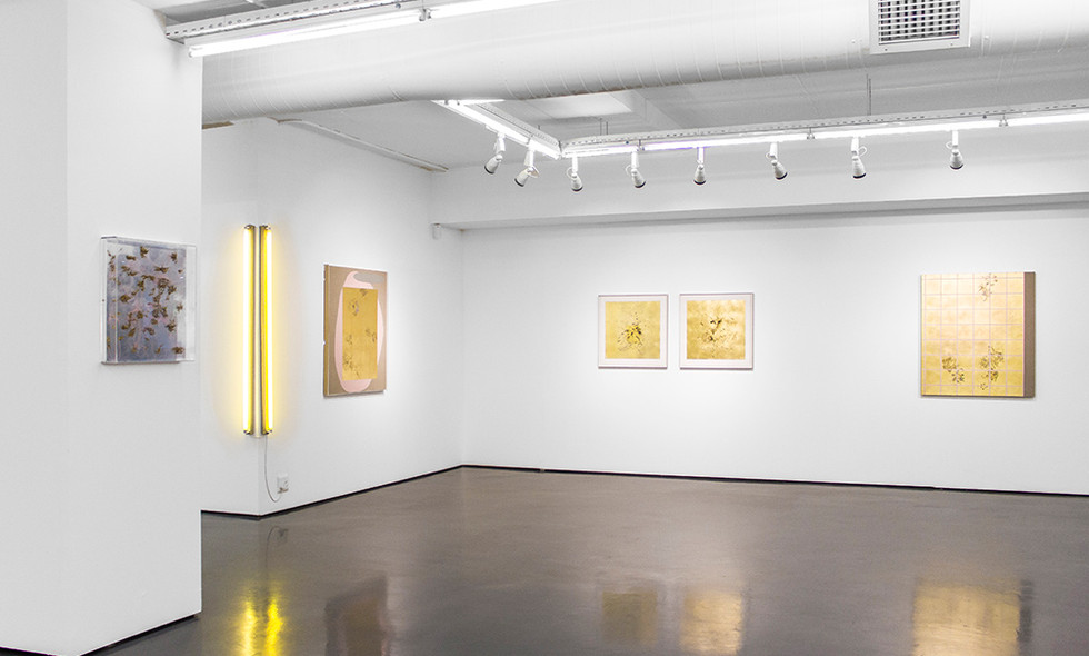 Of itself   2019   Installation View