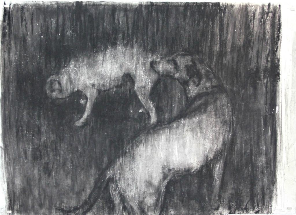 Johann Louw | Twee Honde | 2016 | Charcoal on Paper | 127 x 180 cm