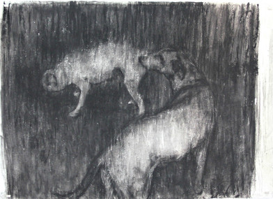 Johann Louw   Twee Honde   2016   Charcoal on Paper   127 x 180 cm