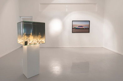 Ashley Walters | Parallel | 2019 | Installation View