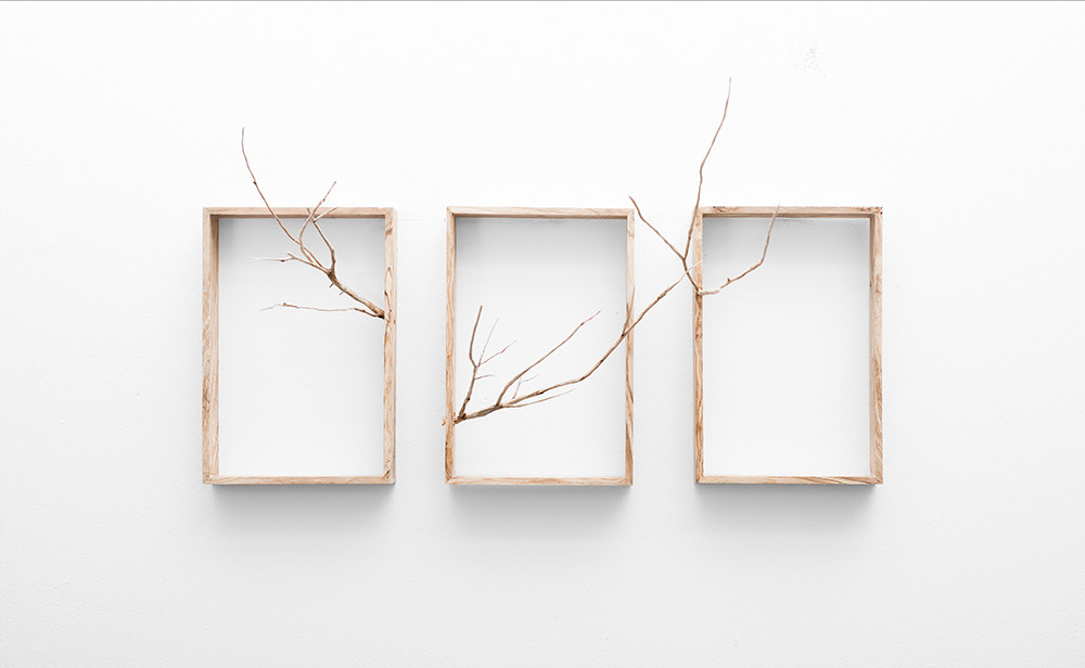 Ruann Coleman | Reach (Triptych) | 2017 | Carved Wild Olive | 32 x 82 x 42 cm