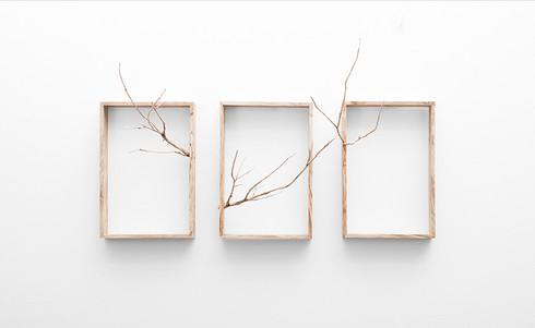 Ruann Coleman | Reach (Triptych) | 2017 | Carved Wild Olive | 32 x 82 x 42 cm