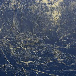 Peter Eastman | Deep Chine - Flood II | 2015 | Oil on Aluminium | 200 x 200 cm