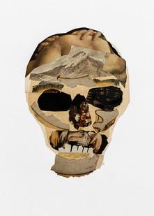 Kate Gottgens   Vanitas II (Skull with Renaissance teeth)   2020   Collage on Paper   76 x 56 cm
