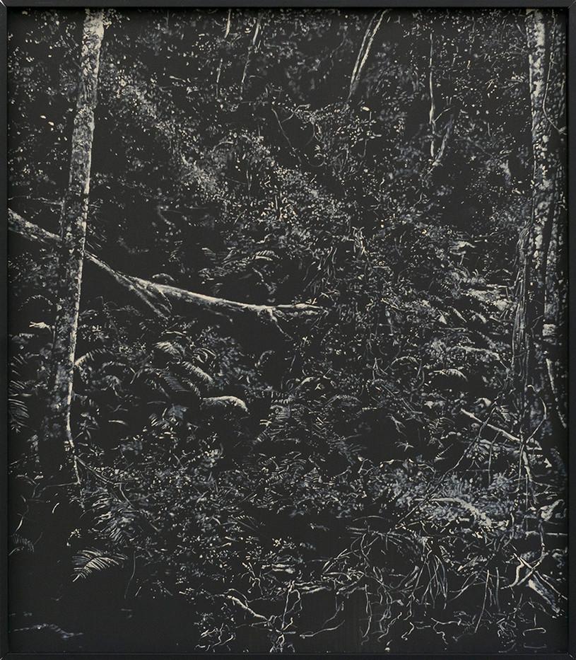 Peter Eastman | Deep Chine - Coldstream V | 2016 | Oil on Aluminium | 40 x 34 cm