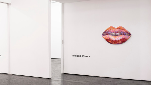 FRANCES GOODMAN Artist Room 20.06.20 – 24.07.20  Cape Town