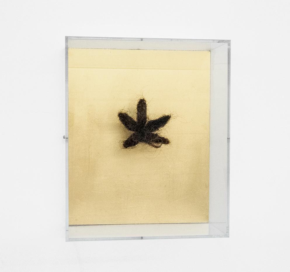 Pierre Vermeulen | Hair orchid no. 2 | 2018 | Gold Leaf Imitate and Artist's Hair on Aluminium | 34 x 28 x 15.5 cm