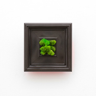 Miranda Moss | Shady Side | 2016 | Preserved Icelandic Moss and Spray Paint on Recovered Frame | 17 x 17 cm